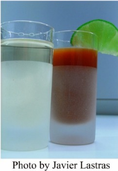 Tequila Don Julio con Sangrita